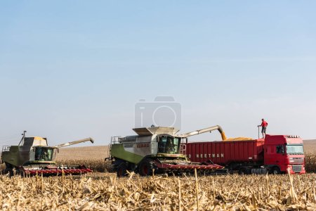 Photo for LVIV, UKRAINE - OCTOBER 23, 2019: farmers in tractors harvesting wheat against blue sky - Royalty Free Image