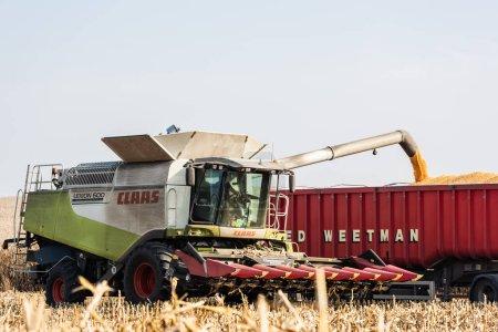 Photo pour LVIV, UKRAINE - 23 OCTOBRE 2019 : agriculteur en tracteur avec lettrage claas récoltant du blé contre le ciel bleu - image libre de droit