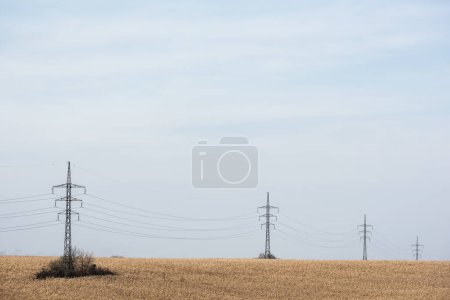 golden field near power line against blue sky