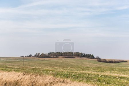 Photo for Golden field green and grassy lawn against blue sky - Royalty Free Image