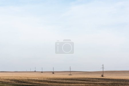 Foto de Línea eléctrica cerca del campo de oro contra el cielo azul - Imagen libre de derechos