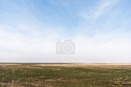 Photo pour Pelouse herbeuse près du champ contre le ciel bleu avec des nuages - image libre de droit
