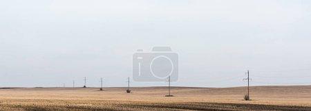 Photo pour Concept panoramique de ligne électrique près du champ doré contre ciel nuageux - image libre de droit