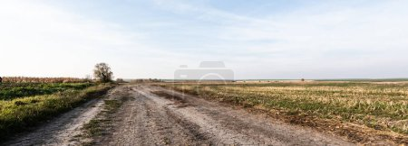 Photo for Horizontal concept of path near grassy lawn against blue sky - Royalty Free Image