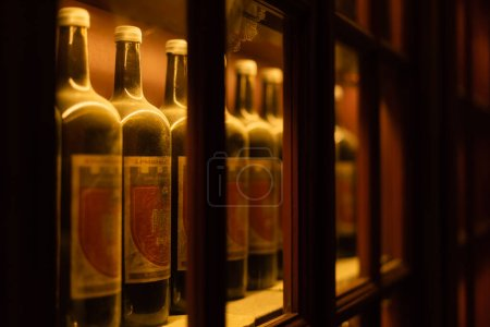 LVIV, UKRAINE - OCTOBER 23, 2019: selective focus of bottles with wine and cyrillic lettering on shelf