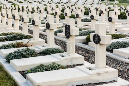 Photo for LVIV, UKRAINE - OCTOBER 23, 2019: graves with crosses and lettering near green plants on lviv defenders cemetery - Royalty Free Image