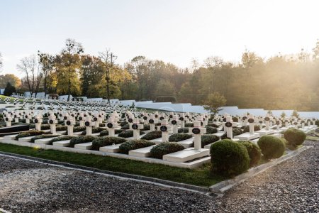 Photo for LVIV, UKRAINE - OCTOBER 23, 2019: sunlight on graveyard with crosses and lettering near green trees on lviv defenders cemetery - Royalty Free Image