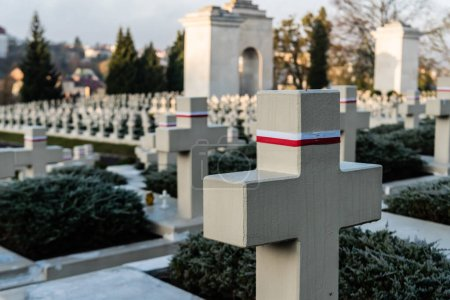 Photo for LVIV, UKRAINE - OCTOBER 23, 2019: selective focus of polish graves and stone crosses in lychakiv cemetery in lviv, ukraine - Royalty Free Image