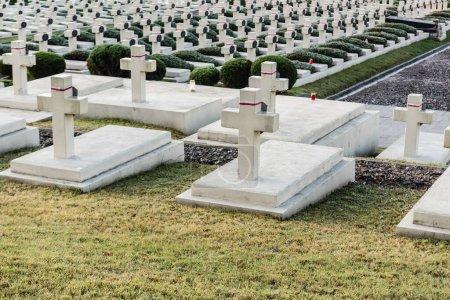Photo for LVIV, UKRAINE - OCTOBER 23, 2019: polish graves and stone crosses in lychakiv cemetery in lviv, ukraine - Royalty Free Image
