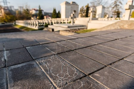selective focus of pavement near polish tombs in lychakiv cemetery in lviv, ukraine