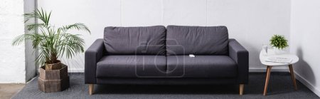 Photo for Room with grey sofa and plants, website header - Royalty Free Image
