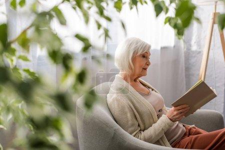 Photo pour Foyer sélectif de femme âgée attentif assis dans le fauteuil et le livre de lecture - image libre de droit
