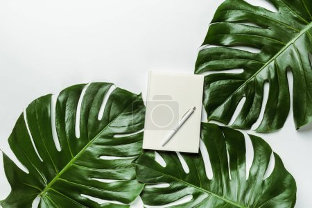 Photo for Top view of notebook with pen on green palm leaves on white background - Royalty Free Image