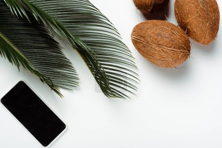 top view of green palm leaves, coconuts and smartphone on white background