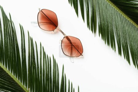 Photo for Top view of green palm leaves near sunglasses on white background - Royalty Free Image