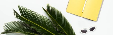 top view of green palm leaves near sunglasses and yellow planner on white background, panoramic shot
