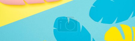 Photo for Top view of paper cut palm leaves on blue and yellow background, panoramic shot - Royalty Free Image