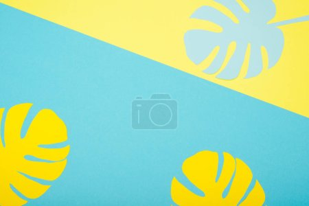 Photo for Top view of paper cut palm leaves on blue and yellow background - Royalty Free Image