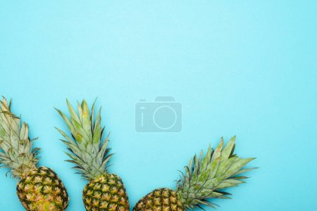 top view of ripe pineapples on blue background
