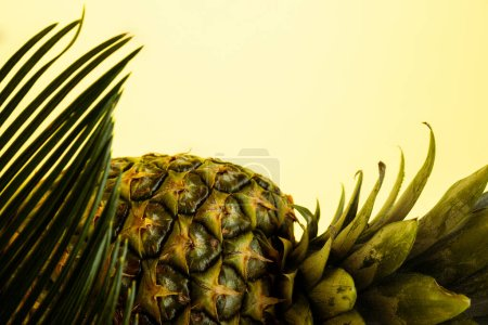 delicious sweet pineapple and palm leaf isolated on yellow