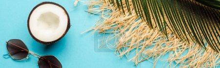 Photo pour Vue du dessus de la feuille de palme verte, moitié noix de coco, lunettes de soleil et chapeau de paille sur fond bleu, vue panoramique - image libre de droit