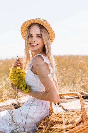 selective focus of sensual woman in white dress and straw hat holding bunch of ripe grapes while resting in field