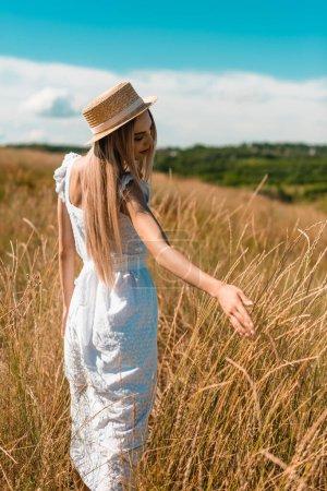 Photo pour Jeune femme blonde en robe blanche et chapeau de paille touchant des épillets tout en se tenant dans le champ - image libre de droit