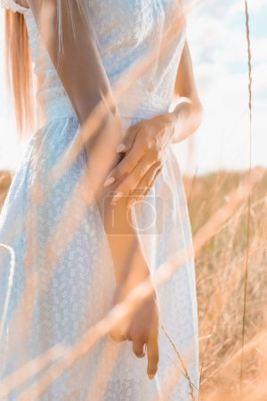 cropped view of woman in white dress standing in grassland, selective focus