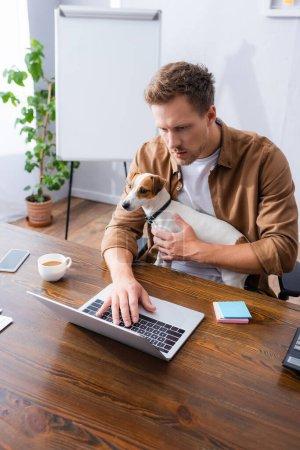 Photo pour Vue grand angle de l'homme d'affaires concentré tenant Jack Russell Terrier chien tout en travaillant à l'ordinateur portable dans le bureau - image libre de droit