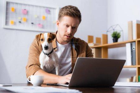 homme d'affaires concentré travaillant à l'ordinateur portable près de Jack Russell terrier chien et tasse de café sur le bureau