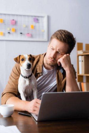 Nachdenklicher Geschäftsmann sieht Jack Russell Terrier Dog beim Sitzen am Arbeitsplatz in der Nähe von Laptop