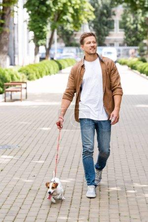 Photo pour Jeune homme en vêtements décontractés marchant avec Jack Russell terrier chien en laisse le long de l'allée urbaine - image libre de droit