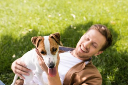 Photo for Young man holding jack russell terrier dog while relaxing on green grass - Royalty Free Image