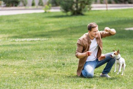 Photo pour Concentration sélective de l'homme formation Jack Russell terrier sur l'herbe dans le parc - image libre de droit
