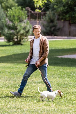 Selective focus of man looking at jack russell terrier on leash in park