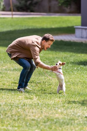 Photo for Selective focus of excited man training jack russell terrier on grass in park - Royalty Free Image