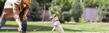 Photo pour Concept panoramique de l'homme jouant avec Jack Russell terrier en laisse dans le parc - image libre de droit