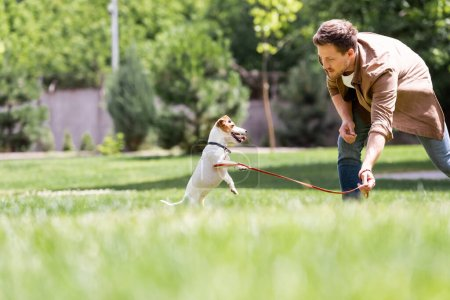 Photo pour Focus sélectif de Jack Russell terrier sautant près de l'homme dans le parc - image libre de droit