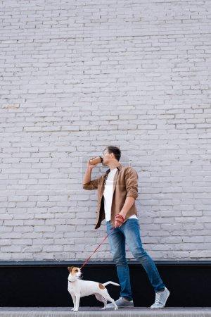 Joven bebiendo café para ir mientras camina jack russell terrier con correa cerca del edificio