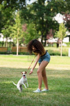 Photo pour Concentration sélective de la jeune femme gardant Jack Russell Terrier chien en laisse - image libre de droit