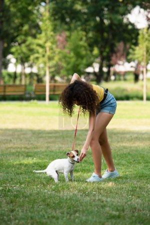 Photo pour Concentration sélective de la jeune femme nourrissant Jack Russell Terrier chien - image libre de droit