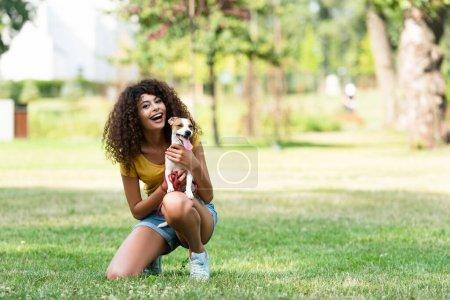 Photo pour Concentration sélective de la jeune femme tenant le chien et regardant la caméra - image libre de droit