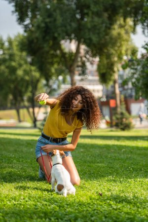 Selective focus of young woman playing with jack russell terrier dog in park