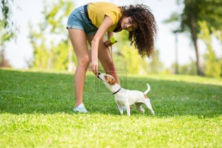 Photo pour Concentration sélective de la jeune femme touchant chien et tenant balle de tennis - image libre de droit
