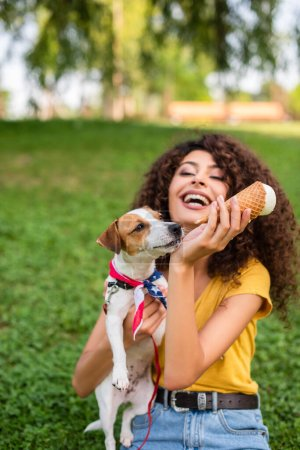 Photo pour Focus de sélection de femme excitée tenant Jack Russell terrier chien et crème glacée - image libre de droit
