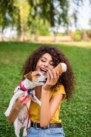 Photo pour Concentration sélective de la femme assise sur l'herbe avec de la crème glacée et tenant chien - image libre de droit
