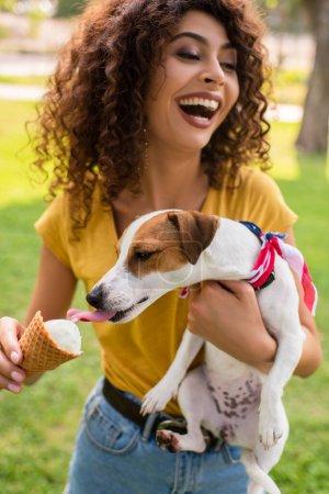 Photo pour Concentration sélective de la jeune femme riant et tenant chien léchant la crème glacée - image libre de droit