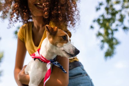 cropped view of curly woman holding jack russell terrier dog against blue sky