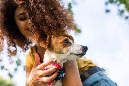 Photo pour Vue à angle bas de jeune femme bouclée tenant Jack Russell Terrier chien contre ciel bleu - image libre de droit
