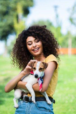 Photo pour Foyer sélectif de joyeux, bouclé femme caressant Jack Russell Terrier chien - image libre de droit